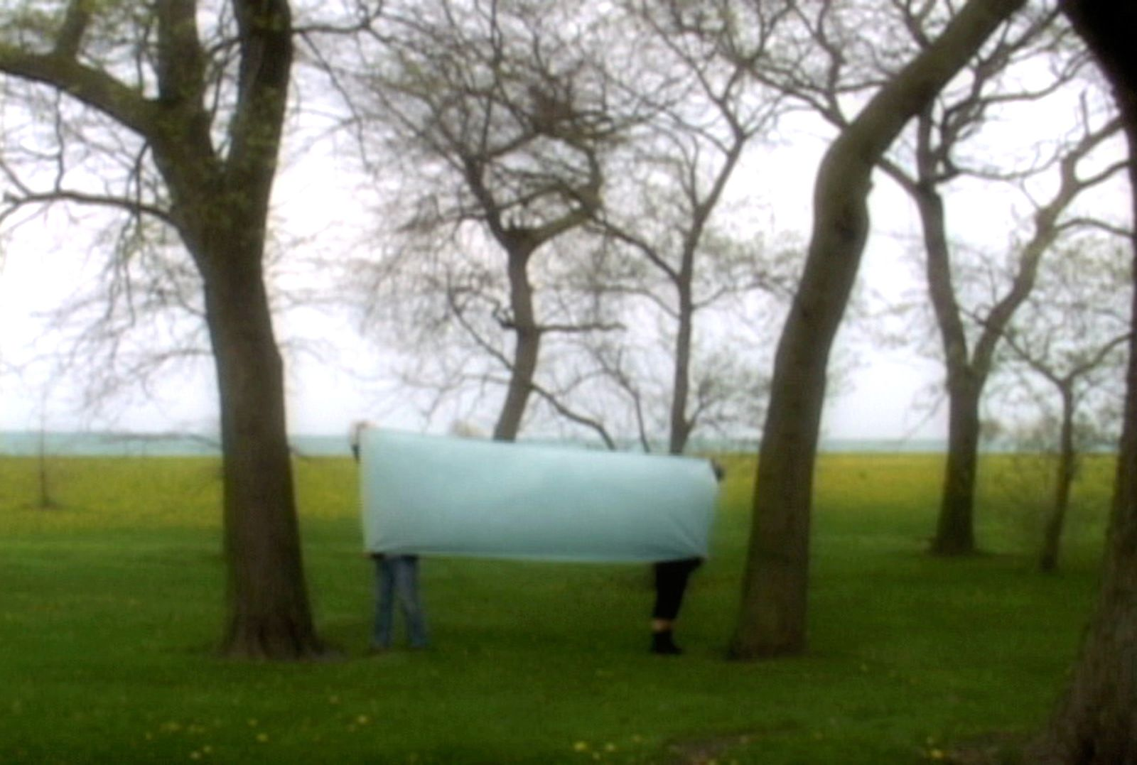 Still from We Began by Measuring Distance  •  2009